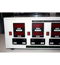 Desulphator batería Pro REGBAT 4 x 12V