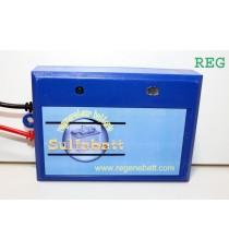 Régénérateur Batteries 6v Traction Démarrage Stationnnaire