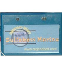 Régénérateur Batteries 12/24/36/48v Démarrage Stationnaire